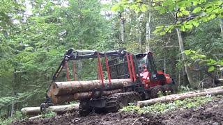 Macchine Forestali al lavoro: filiera sostenibile