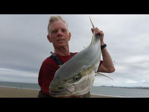 NZ Basic Fishing   Surfcasting   Kingfish Off The Beach