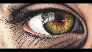 Desenhando um olho com Lápis de cor - Speed Draw