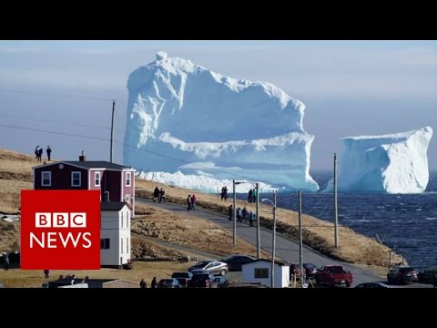 Huge iceberg looms over Canada's Newfoundland coast - BBC News