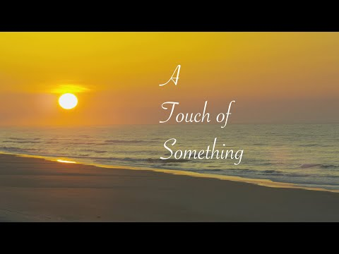 Honey Bee and the Suffering Fools - A Touch of Something (Official Video) 2020