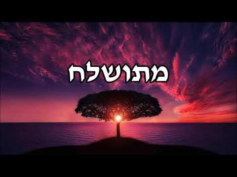 מתושלח - שיעור תורה בספר הזהר הקדוש מפי הרב יצחק כהן שליט