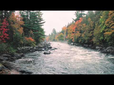 Fleet Foxes - Blue Ridge Mountains (with lyrics)