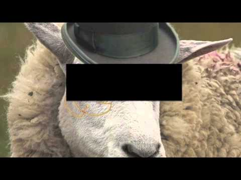 Fancy Sheep Reads: Episode 5- Racial Epithets and Autism (Censored)
