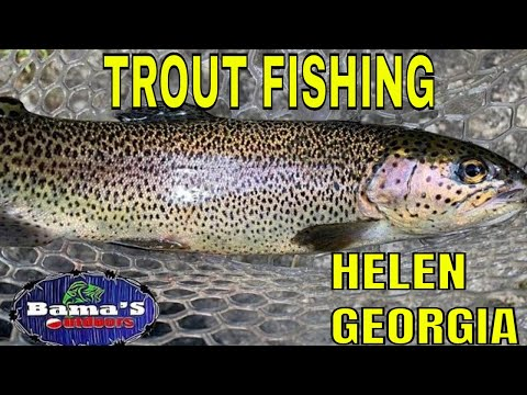 HELEN GEORGIA TROUT FISHING TIPS AND TECHNIQUES