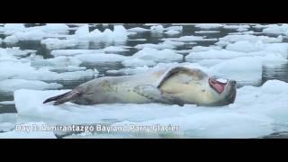 Wild Patagonia   3 Nights