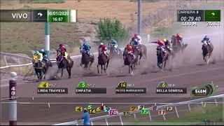Vidéo de la course PMU PREMIO PABETTE