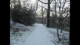Parkland Walk (Winter) Part Two