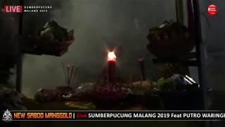 Gambar cover SAKRAL Suguh Sesaji - New SABDO MANGGOLO Live SUMBERPUCUNG MALANG 2019