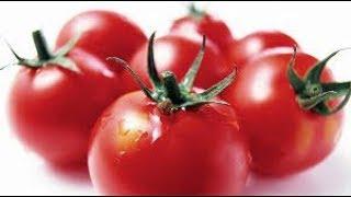 Маринованные помидоры на зиму мамин рецепт