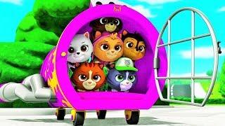 🐶Paw Patrol Full Episodes - Games Nickelodeon ✔ Paw Patrol Cartoon - Games For Kids Nick JR # 47