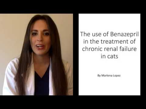 The use of benazepril in the treatment of chronic renal failure in cats