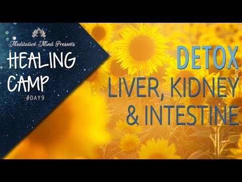 Sound & Color Therapy for Liver, Kidney & Intestine Detox | Healing Camp #Day 9