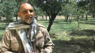 Peace in Afghanistan thru Agriculture