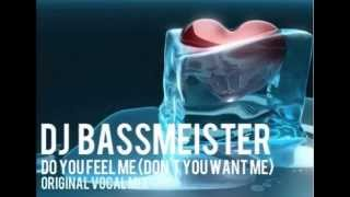 DJ Bassmeister - Do you feel me (Don