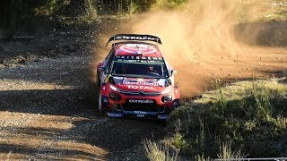 WRC Chile 2019, Full Action. Fans video compilation. Mistakes and Crash