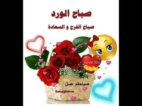 حبيبي صباح الخير صباحك ورد وفل ولوز يا عمري صباحك نور يلا