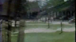 Vietnam War Destruction by WolfieRed1