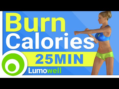 Burn up to 350 Calories at Home: Weight Loss Workout - 25 Minutes