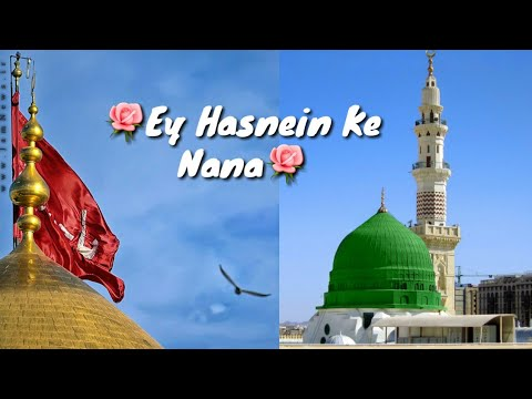 ❤Milad Raza Qadri❤| Ey Hasnain Ke Nana | Naat Status For WhatsApp