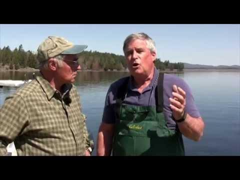 Tupper Lake Fish Stocking