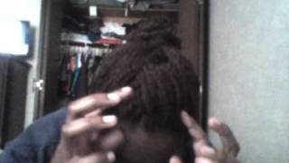 Protective Style Updo #2 (inspired by hairmania3000)