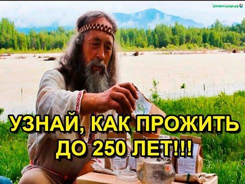 Книга: Русский травник. Описание и применение