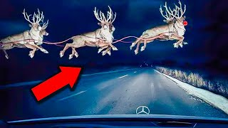 These are 10 times rudolph the rednosed reindeer was caught on camera!