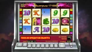 Казино i книжки стриптиз в казино и клубах