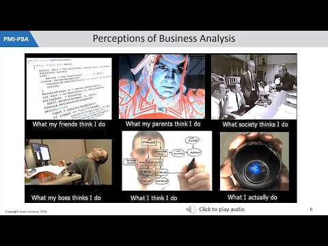 PBA, Business Analysis