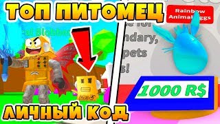 SIMULATOR DROPS a PERSONAL CODE on the pet! SPENT 50.000 APPLES ROBLOX SIMULATOR
