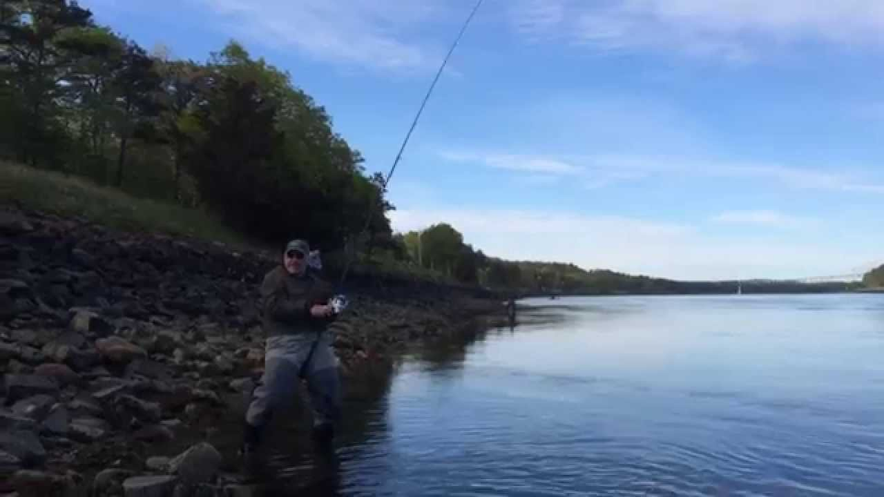Fishing on the cape cod canal 2015 youtube for Cape cod canal fishing report