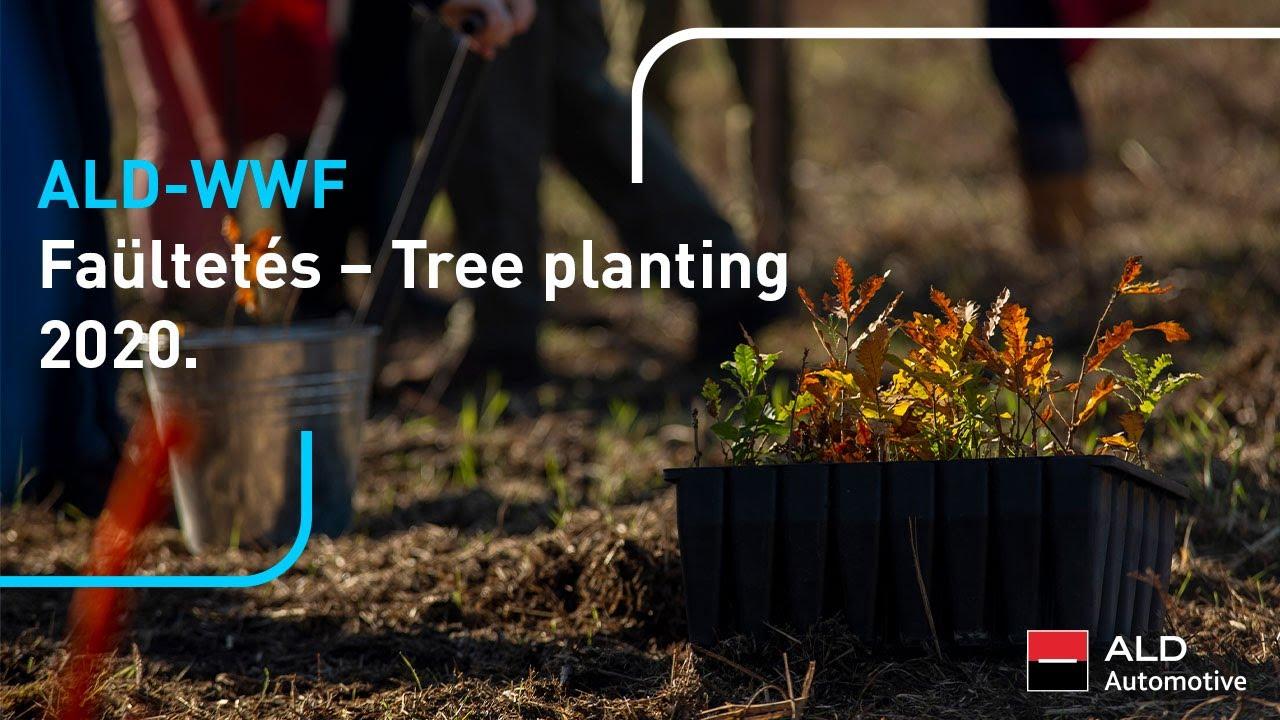 Download ALD Automotive Hungary/Magyarország: Tree planting with WWF 2020