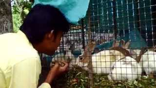 Me with Rabbits - Yercaud hill station (ANNA PARK) 23.05.09