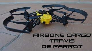 Analisis Parrot Airbone cargo Travis
