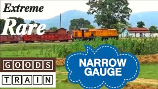First on Youtube Crossing of Narrow Gauge