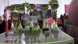 """Международная выставка кошек клуба """"БАФФИ"""" 22,23.10.2016 г.Кривой Рог"""