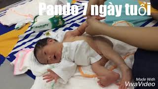 Dùng dầu dừa mát xa cho trẻ sơ sinh an toàn và hiệu quả