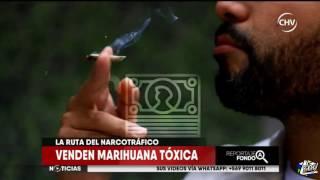 La ruta de la marihuana prensada para llegar a Chile thumbnail