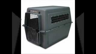 Buy A Dog Crate, Dog Crates In All Sizes Available
