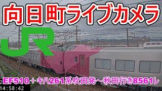 【向日町ライブカメラ】EF510+キハ261系(甲種)吹田発~秋田行き8561レ
