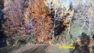 Schöfweg im Bayerischen Wald