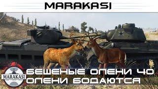 Приколы World of Tanks бешеные олени, олени бодаются 40