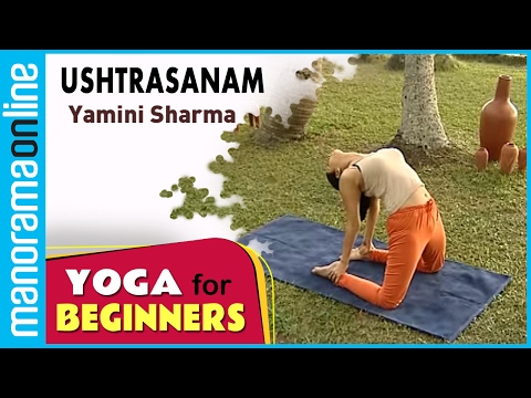 Ushtrasanam  | Yoga for beginners by Yamini Sharma | Health Benefits | Manorama Online