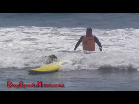 2016 Surf Dog Imperial Beach | Part 3 - Finals