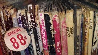 Music Store Vinyl (Special-Episode) 📦🎶