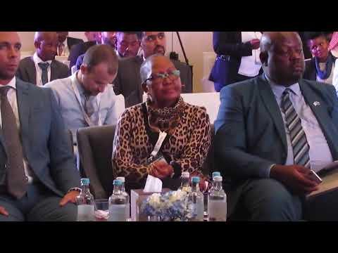 UAE   BOTSWANA Business Forum held in Dubai