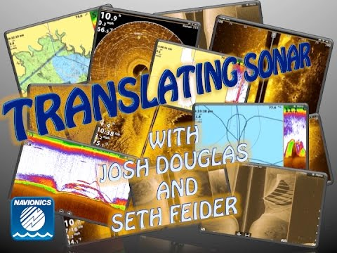 Webinar: Translating Sonar