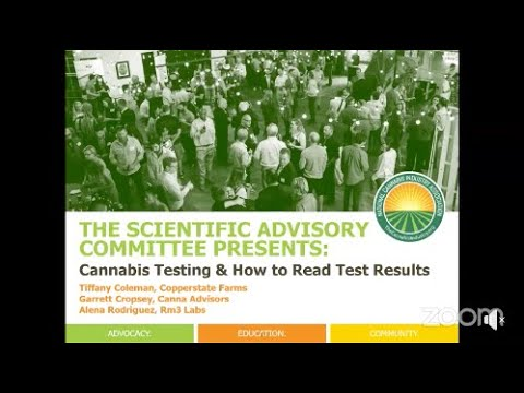 WEBINAR: Cannabis Testing & How To Read Test Results!