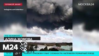 Очевидец рассказал о пожаре на складе в Подмосковье - Москва 24